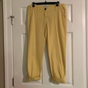 Cabi Yellow Coast Crop